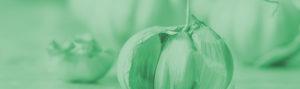 Aged-Garlic-Ingredient